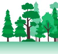 林业科学研究所