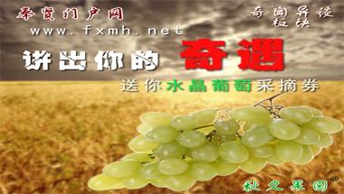 秋久果园水晶葡萄免费送