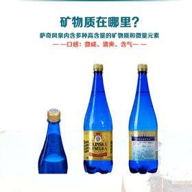 萨奇风泉矿泉水1000mlx6瓶箱装 捷克原装进口
