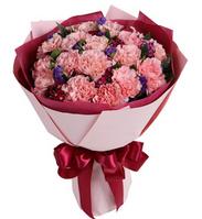 幸福绽放----粉色康乃馨19枝