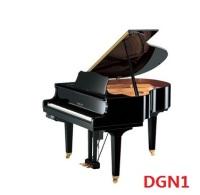雅马哈小型系列:DGN1