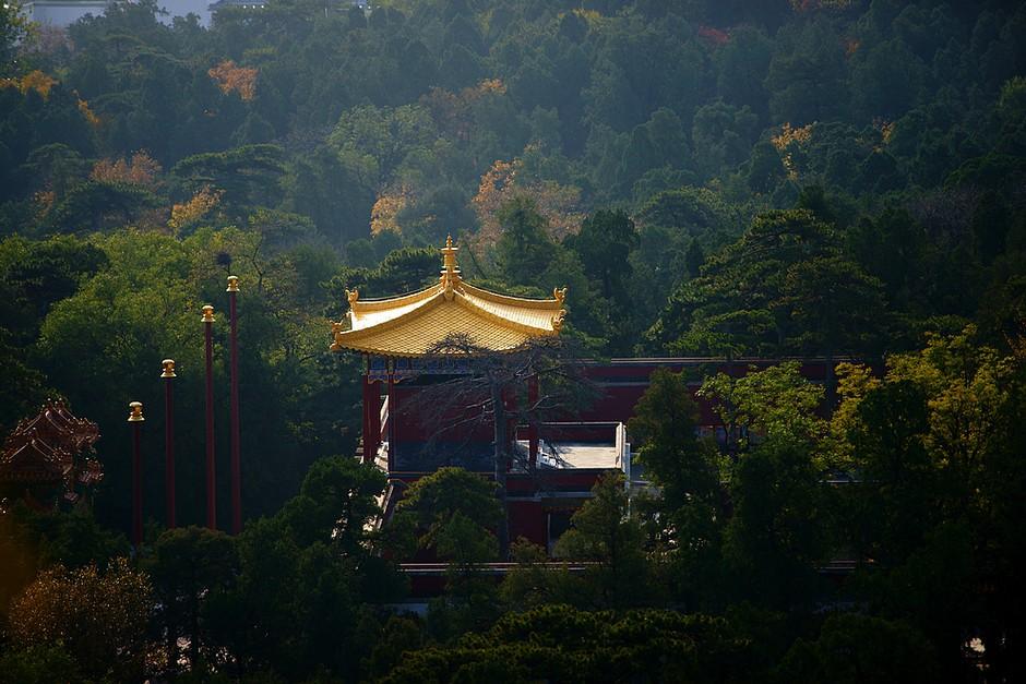 香山  摄影:dydszgd49