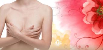 胸部玫瑰营养疗法